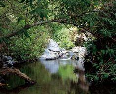 El barranco de Badajoz. Naturaleza encantada