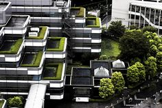 live green. Sustainable buildings