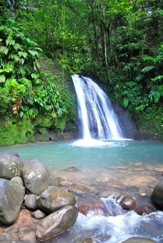 Waterfall in #Guadeloupe, French West Indies.
