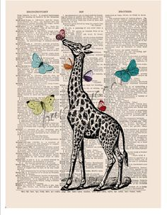 Giraffe print Butterfly art COUPON SALE Dictionary by bmarinacci