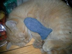 Denim cat toy filled with catnip Cat Toys, Denim, Knitting, Cats, Projects, Animals, Log Projects, Gatos, Blue Prints