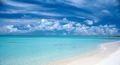 Antigua isola nei Caraibi con mare cristallino e ricco di vita, spiagge di sabbia bianca.