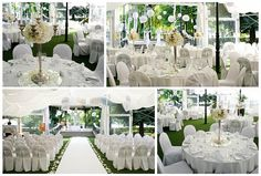 Bílá vějířová svatba