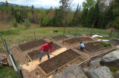 An idea for hillside gardening. Terraced raised beds.