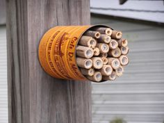A 5th grader made this awesome mason bee house for our community garden.  Coffee can, bamboo, paper.