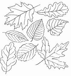 feuilles - Scrappez avec Mamy Anick