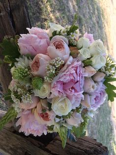 peony david austins spray roses chins and wax flower created by Lovely Bridal Blooms
