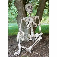 Skeleton | Wayfair Fairy Halloween Costumes, Halloween Crafts, Halloween Ideas, Halloween Parties, Halloween 2017, Scary Halloween, Country Halloween, Halloween Outside, Halloween Camping