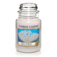 Like gliding along a tropical reef, this unique watery fresh fragrance surrounds you in the soothing warmth of sea musk.