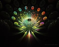Fractals in Nature Animals | ... collection fractal art creative art wallpapers beautiful fractal