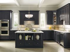 Houzz Dark Gray Kitchen Cabinets