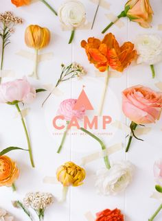 Now this is the kind of camp I can totally get behind! CAMP-Creating Art Meaning Purpose was founded by one uber talented Ginny Branch (my fave) and her uber talented friends (birds of a feather.....