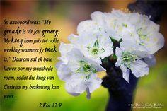 """Dag 156  2 Kor 12:9 Sy antwoord was: """"My genade is vir jou genoeg. My krag kom juis tot volle werking wanneer jy swak is."""" Daarom sal ek baie liewer oor my swakhede roem, sodat die krag van Christus my beskutting kan wees."""