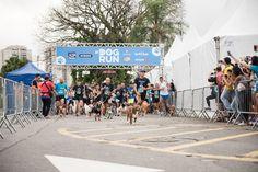 E este ano, aconteceu a 4° edição da SP Dog Run! A Leica gosta de participar de todos os eventos, e neste não podia ser diferente. Um percurso de 2km dentro do estacionamento de um shopping aqui em São Paulo. Vem ver!♡ Comentários comentários