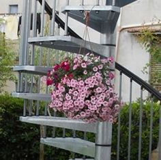 Flower - Spiral staircase #Enduro