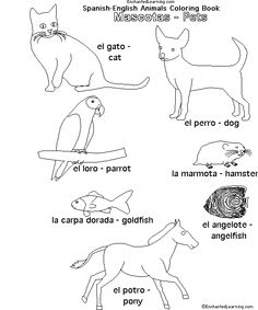 Animals in Spanish: Pets - EnchantedLearning.com