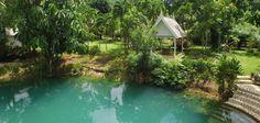 Blue Hole, Jamaica, Public, Gardens, Places, Water, Outdoor Decor, Home Decor, Gripe Water