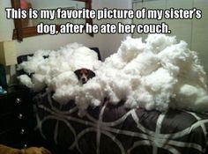 Poor sis...