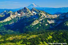 Vista On Top of Skyline Trail with Mt Adams on the horizon, Mount Rainier National Park, Washington ✯ ωнιмѕу ѕαη∂у