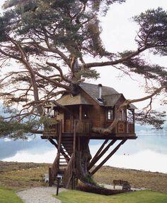 The Lodge, Baumhaus (Photo)