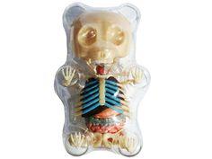4D Master Gummi Bear Skeleton Anatomy Model Kit, Clear: Toys & Games Skeleton Anatomy, Anatomy Models, Puzzle Toys, Gummy Bears, Cookies Et Biscuits, Monsters, Creepy, Action Figures, Geek Stuff