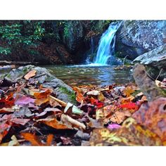 The upper part of Tom's Creek Falls, Marion, North Carolina. October 2013