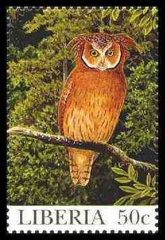 POSTAGE STAMPS:  The Maned owl (Jubula lettii) endemic to Africa. Stamp from Monrovia, circa 1994