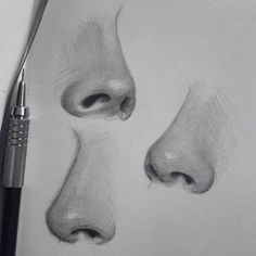 Good Photo pencil drawing nose Strategies These pencil drawing techniques from top artists will help you take your drawing skills to another l Pencil Drawing Tutorials, Pencil Art Drawings, Realistic Drawings, Art Drawings Sketches, Art Tutorials, Drawing Ideas, Realistic Rose, Drawing Tips, Portrait Sketches