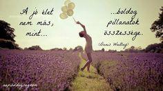 Denis Waitley definíciója a jó életre. A kép forrása: napiboldogsag Powerful Words, Buddhism, Einstein, Life Quotes, Thoughts, Motivation, Feelings, Happy, Pictures