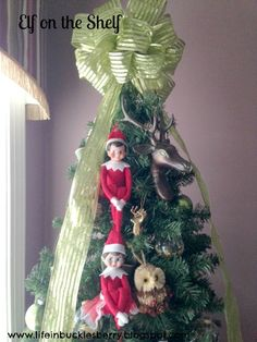 Elf on Shelf- Skippy and Ginger posing on the Christmas tree. www.lifeinbucklesberry.blogspot.com