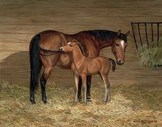 A925474381: Look What I Found-Horses Painting by Persis Clayton Weirs