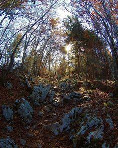 Reposting @samsamcolombo: ∆ Sunrise Hunters ∆ ☀️ . . . . #Landscape #montain #outdoor #training #nature #explore #travel #escape #exploring #trail #instatravel #trekking #walking #traveling #montagne #trailrunning #running #runforever #runforfun #c4c #run #hiking #panorama #hike #nike #annecy #sunrise #lake #veyrier