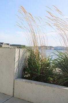 Vi har leveret plantekummerne af beton på Havnepromenade i Aalborg. Aalborg, Aarhus, Bruges, Plants, Outdoor, Patio, Outdoors, Plant, Outdoor Games