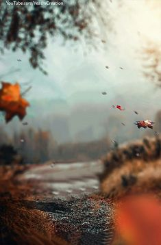 TOP 10 AWESOME MANIPULATION HD BACKGROUND DOWNLOAD || BY YEASIN CREATION - Yeasin Creation