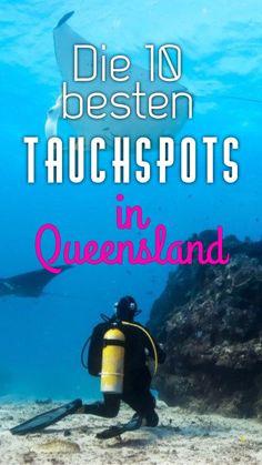 Abtauchen am Great Barrier Reef: Die 10 besten Tauchplätze in Queensland - Great Barrier Reef, Scuba Diving, Australia, Vacation, Places, Pin Tool, Travel, Roadtrip, Trips