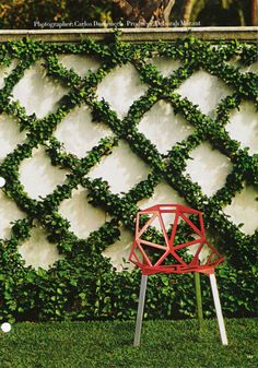 Lattice work made out of ivy, another great example of vertical gardening.