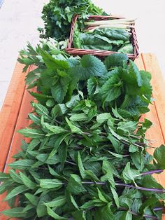 Mojito, Herbs, Plants, Finger, Fingers, Herb, Plant, Planets, Medicinal Plants