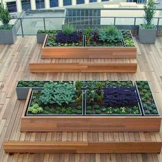 Raised Garden Bed Roof Roof Garden Transformation Ideas - Beautiful and Cheap Gardening Design That Will Save You Space and Money! Outdoor Gardens, Outdoor Rooms, Roof Gardens, Modern Gardens, Landscape Design, Garden Design, Urban Landscape, Garden Ideas To Make, Rooftop Patio