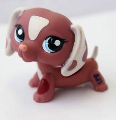 2006 YR! Limited littlest pet shop special edition Chocolate Dachshund dog | eBay