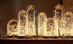 $9.99 for a 2 pack of LED seed lights ($19.99 for a 4 pack, or $35 for an 8 pack)