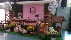 mesa-decorada-fazendinha.18.jpg (900×507)
