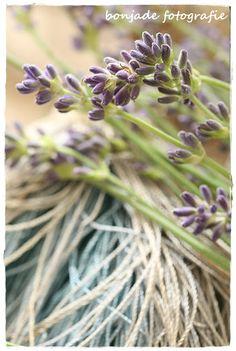 bonjade Lavender