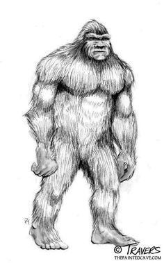 A 1977 account of Big Foot sightings at an American Military base.