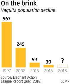 Graphic: SCMP