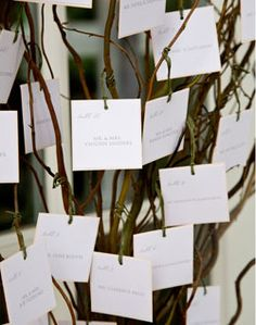 wishes tree