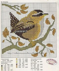 want to make this wren.  Looks like it's a Portuguese pattern.   At least I can read the DMC colors and it's 69 x 69 sts