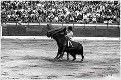 Vistió su primer traje de luces en Villarrobledo, El 31 julio 1971 en parte seria de un espectáculo cómico. En ese año y el siguiente toreó bastantes festejos en toda la zona de la provincia albaceteña y las limítrofes. Su primera actuación en una novillada formal fue en la plaza de Peñas de San Pedro en las fiestas de dicho año de 1972.