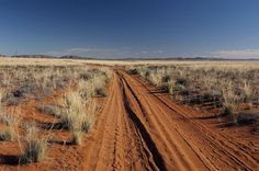 Off the beaten track, Namaqualand National park, Northern Cape by South African Tourism, via Flickr