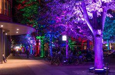 berlin festival of lights (3)