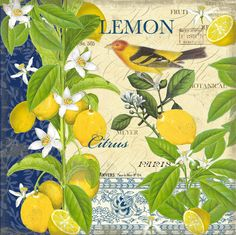If you are an art buyer and would like access to my ful l licensing portfoliao please email me for a password. Painting Patterns, Fabric Painting, Geometric Patterns, Paper Background Design, Lemon Painting, Lemon Art, Turkish Art, Botanical Illustration, Vintage Posters